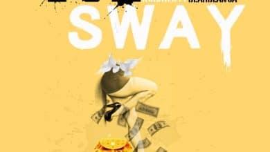Von Sway cover