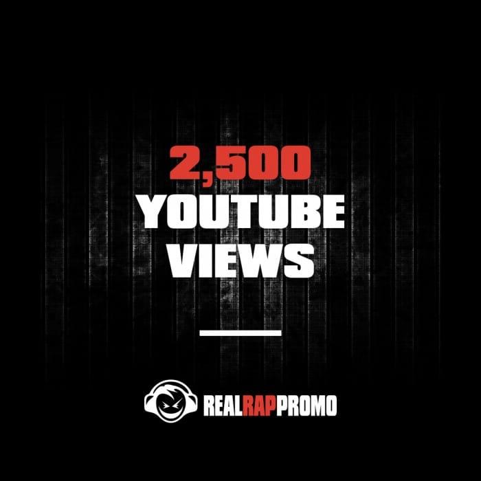 2500 YouTube Views