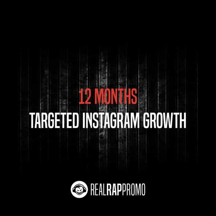 12 Months Targeted Instagram Growth