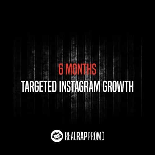 6 Months Targeted Instagram Growth