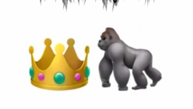 King Camil - King Kongquered